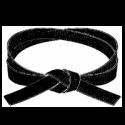blackbelt200-png